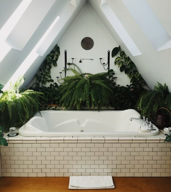 Detox Your Bathroom